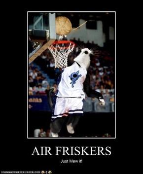 AIR FRISKERS
