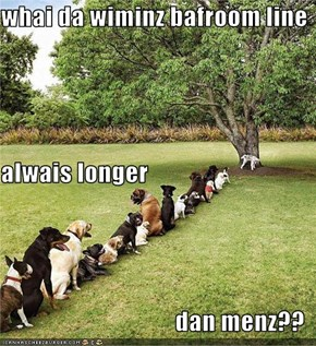 whai da wiminz bafroom line alwais longer dan menz??