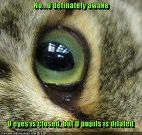 No...U definately awake     U eyes is closed, but U pupils is dilated