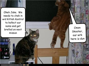 Jake and Skooter - Underkover Katz