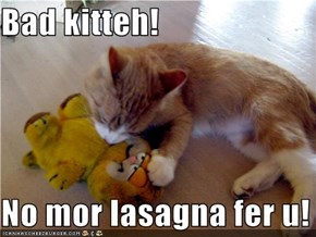 Bad kitteh!  No mor lasagna fer u!