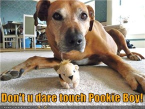 Don't u dare touch Pookie Boy!