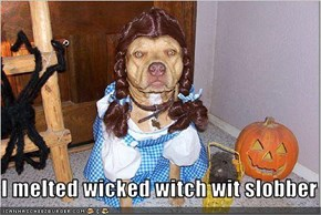 I melted wicked witch wit slobber