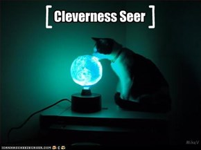 Cleverness Seer