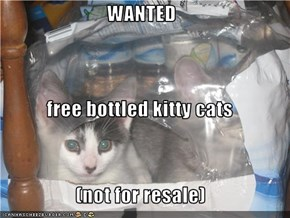WANTED free bottled kitty cats (not for resale)