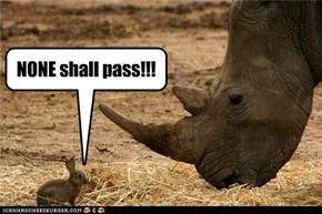 NONE shall pass!!!