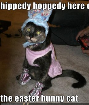 hippedy hoppedy here comes  the easter bunny cat