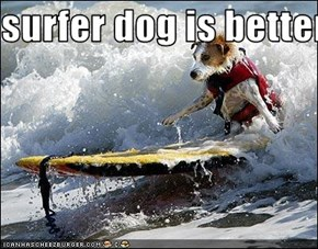 surfer dog is better thab you