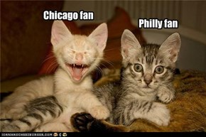Stanley cup kitties