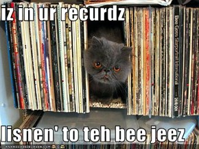 iz in ur recurdz  lisnen' to teh bee jeez