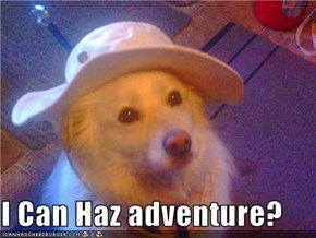 I Can Haz adventure?