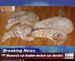 Breaking News - Monorail cat double-decker car derails!