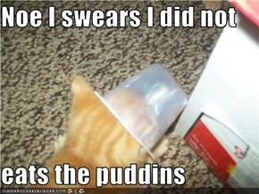 Noe I swears I did not   eats the puddins
