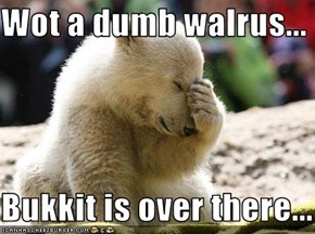 Wot a dumb walrus...  Bukkit is over there...
