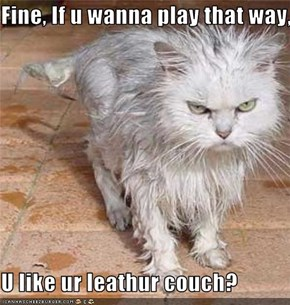 Fine, If u wanna play that way,  U like ur leathur couch?