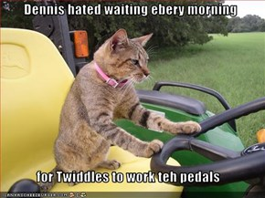 Dennis hated waiting ebery morning  for Twiddles to work teh pedals