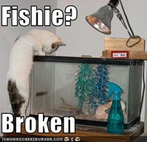 Fishie?  Broken