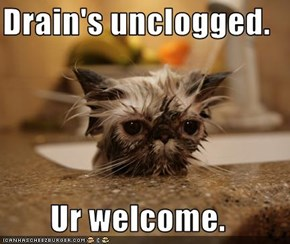 Drain's unclogged.  Ur welcome.