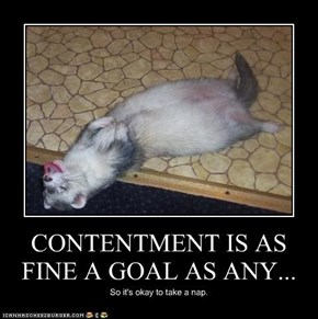 CONTENTMENT IS AS FINE A GOAL AS ANY...