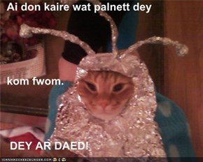 Ai don kaire wat palnett dey                                                                 When my divorce attorney said   kom fwom.      DEY AR DAED!