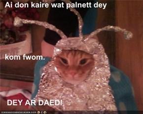 Ai don kaire wat palnett dey                                                                 When my divorce attorney said   kom fwom.      DEY AR DAED!