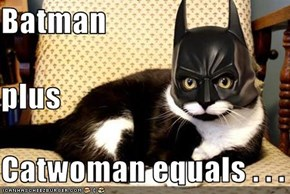 Batman plus  Catwoman equals . . .
