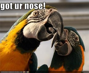 got ur nose!