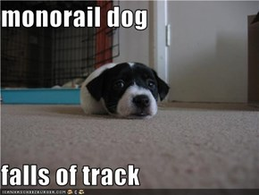 monorail dog  falls of track