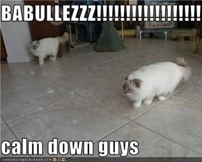 BABULLEZZZ!!!!!!!!!!!!!!!!!!!!!!!!!!!!!!!!!!  calm down guys