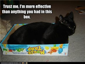 Trust me, I'm more effective than anything you had in this box.