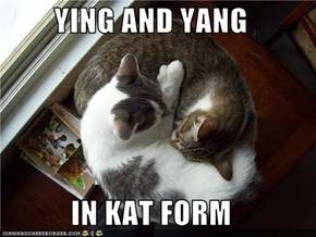 YING AND YANG  IN KAT FORM