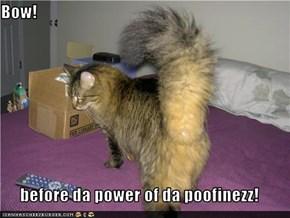 Bow!  before da power of da poofinezz!