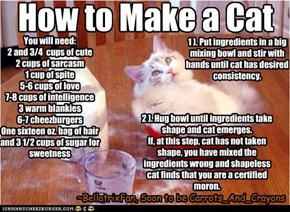 How to Make a Cat