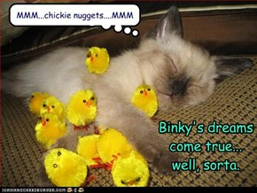 Binky's dreams come true...  well, sorta.