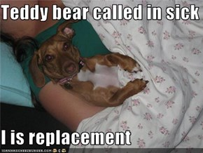 Teddy bear called in sick  I is replacement