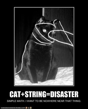 CAT+STRING=DISASTER