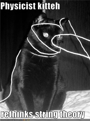 Physicist kitteh   rethinks string theory