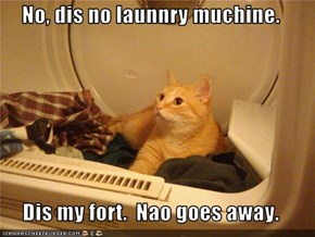 No, dis no launnry muchine.  Dis my fort.  Nao goes away.