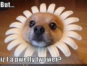 But...  iz I a pwetty fwower?