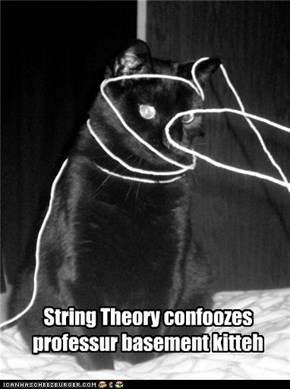 String Theory confoozes professur basement kitteh