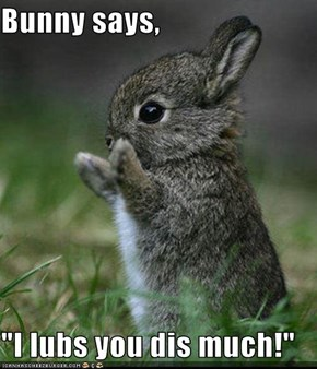 "Bunny says,  ""I lubs you dis much!"""