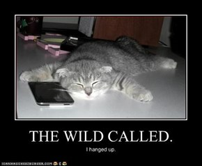 THE WILD CALLED.