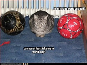 i can has be world cup ball?