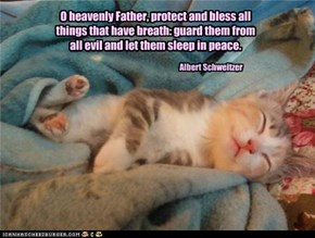 O heavenly Father, protect and bless all things that have breath: guard them from all evil and let them sleep in peace.