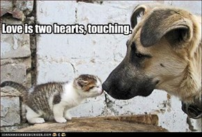Love is two hearts, touching.