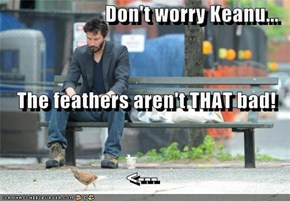 Don't worry Keanu... The feathers aren't THAT bad! <---