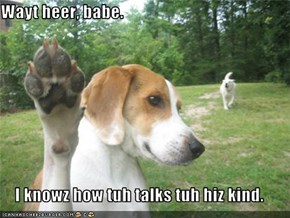 Wayt heer, babe.  I knowz how tuh talks tuh hiz kind.