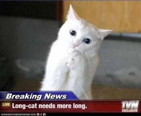 Breaking News - Long-cat needs more long.