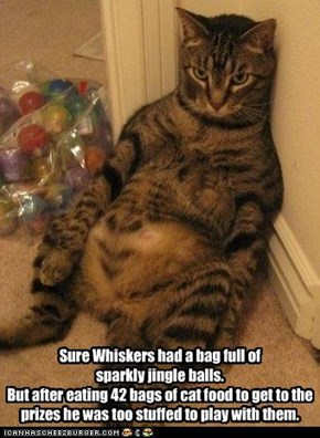 Sure Whiskers had a bag full of  sparkly jingle balls. But after eating 42 bags of cat food to get to the prizes he was too stuffed to play with them.