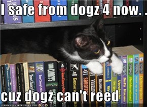 I safe from dogz 4 now. . .  cuz dogz can't reed